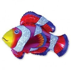 МФ рибка строката червона (FM)