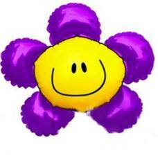 МФ сонячна усмішка фіолетова (FM)