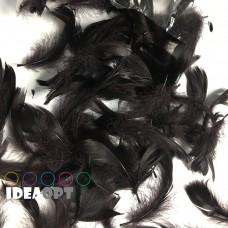 Перья чёрные (15гр +-4гр)
