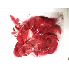 Перья красные (15гр +-4гр)