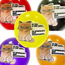 """12"""" (30см) Грустный кот ассорти (10шт) многоцв печать!"""